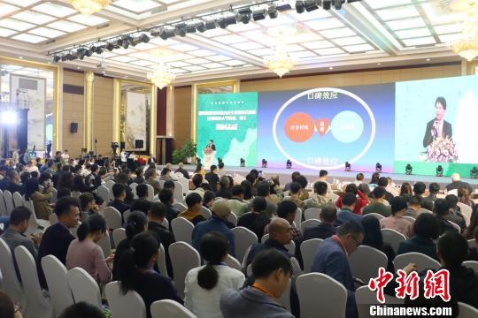 第二届中国(桐庐)国际民宿发展论坛在浙江桐庐举行 王刚 摄